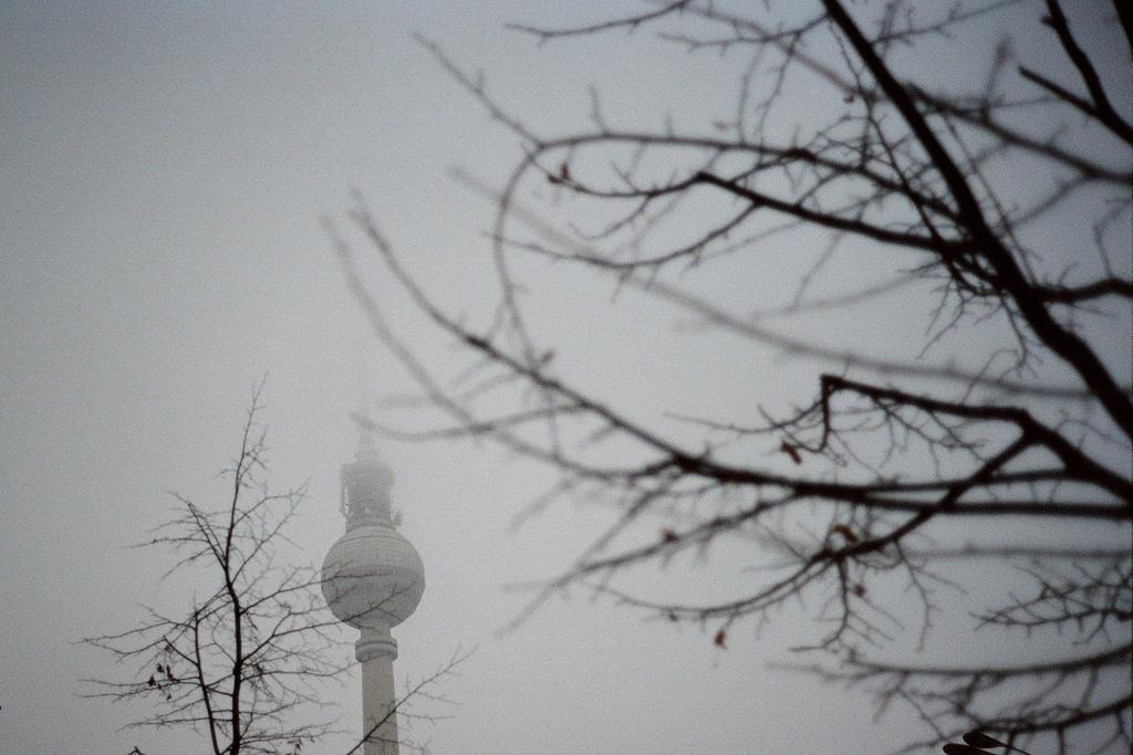 Il meteo Berlinese, la neve, il sole e Gennarino