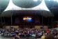 Harry Potter in Concert: la magia di Harry Potter in concerto