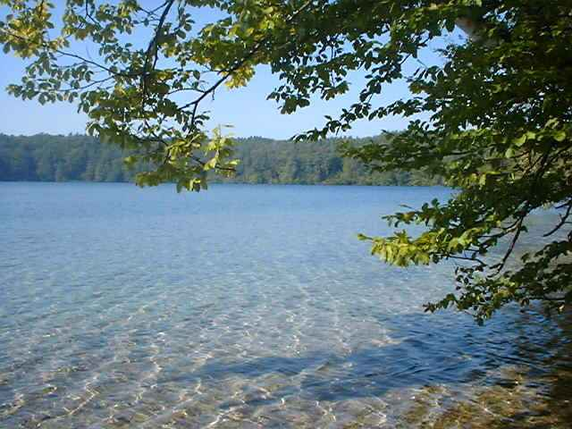 Stechlinsee-68