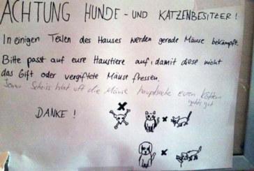 Gennarino e i messaggi dei Berlinesi